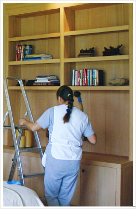 SonoMarin's Cleaning Tips: How to Clean a Bookshelf