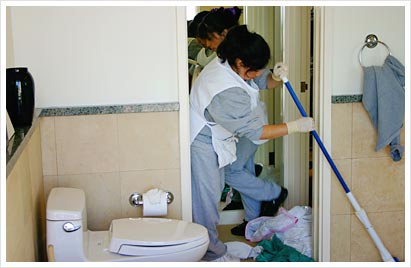 SonoMarin's Cleaning Tips: How to Clean a Toilet Like a Pro