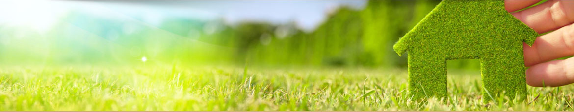 Green Environmentally Friendly Cleaning - Our Green Cleaning Practices Ensure a Cleaner and Healthier Environment
